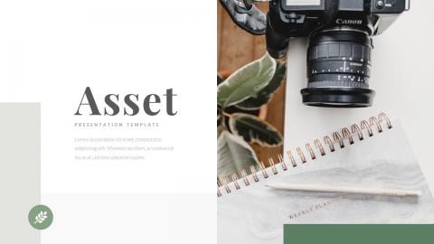 Asset Business Power Point Template